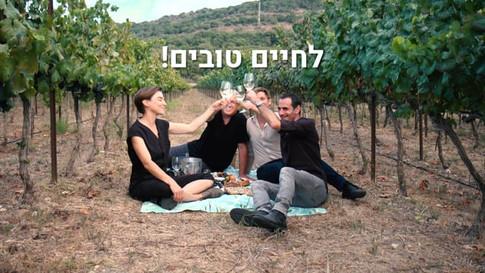 יומן יין ישראלי | סרט קליפ לאתר