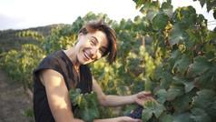 יומן יין ישראל | סרט הדסטארט