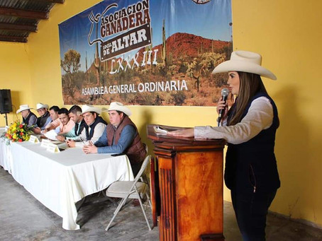 Sexto año consecutivo de MAZ SOL en Asambleas de Ganaderos