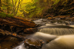 Beautiful river stream in autumn forest with fallen dry leaves at Ricketts Glen Park in Pe