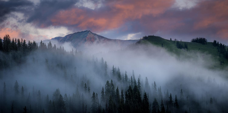 Colorado Wildflowers Photography Workshop_8_edited