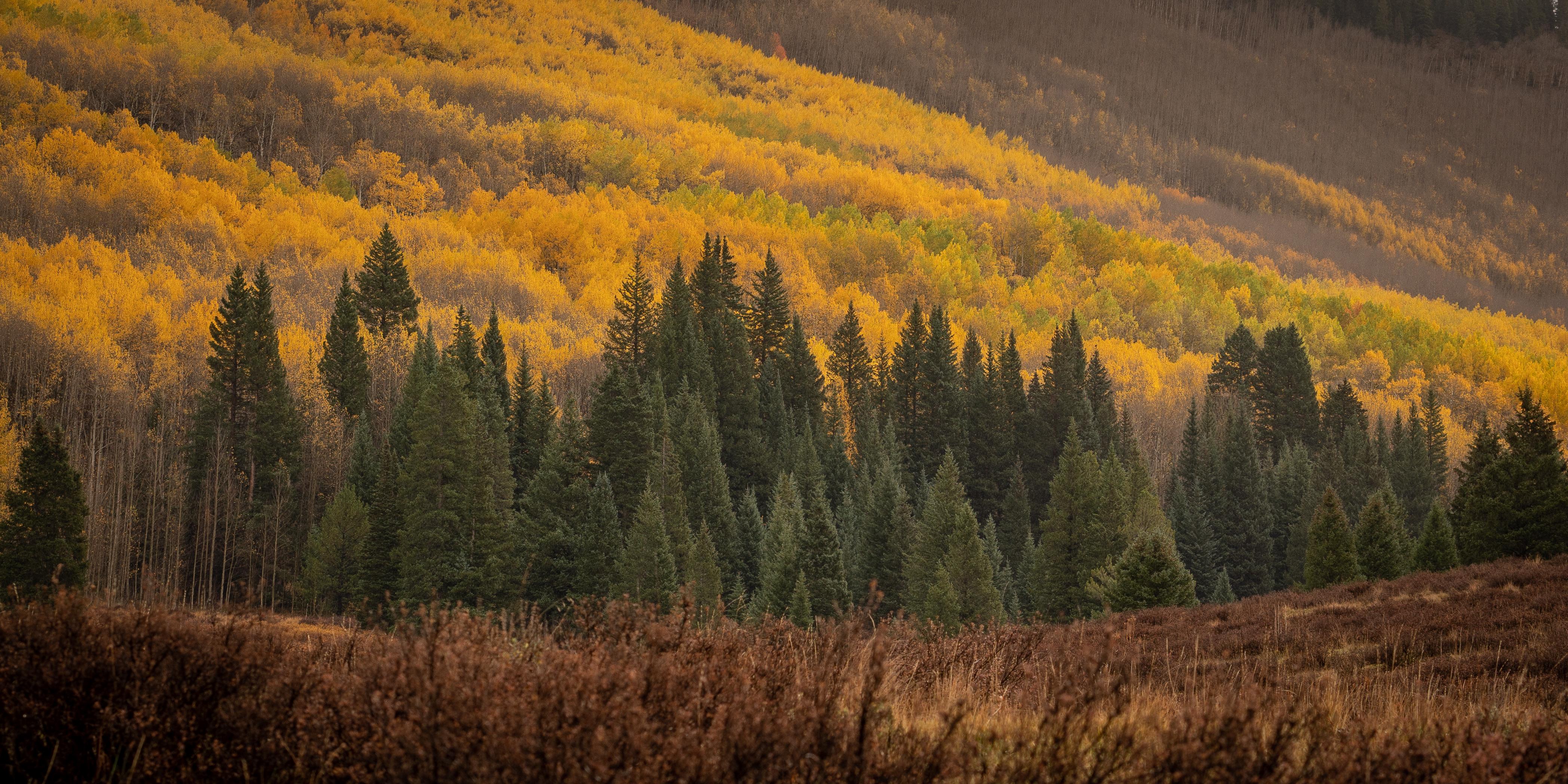 colorado off road fall color23-31