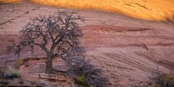 Moab Photography Workshop_11
