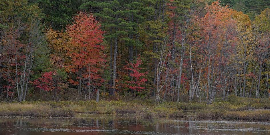 east coast fall color Pennsylvania_2