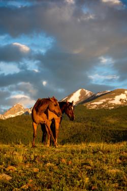 Colorado Horse Ranches Photography Workshop_7