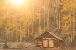 Colorado Fall Color Photography Workshops_7