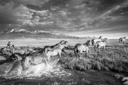 Colorado Horse Ranches Photography Workshop_10