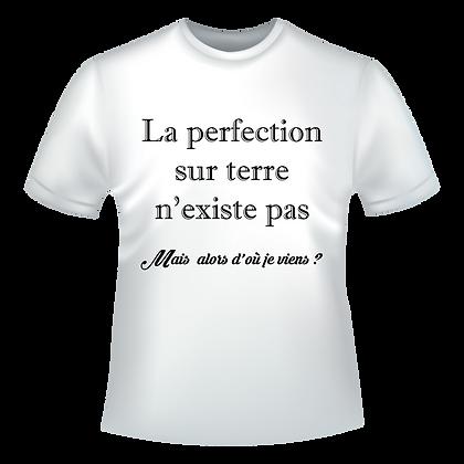 Textiles aux choix marqués à partir de 9,99€, t-shirts, polos, chemise, imprimé : La perfection sur terre n'existe pas, mais
