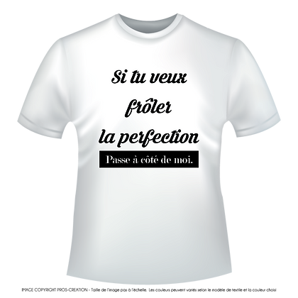 """Textiles aux choix marqués  """"Si tu veux froler la perfection passe a coté de moi"""" à partir de 9,99€"""