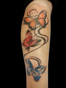 Butterflies by Pat