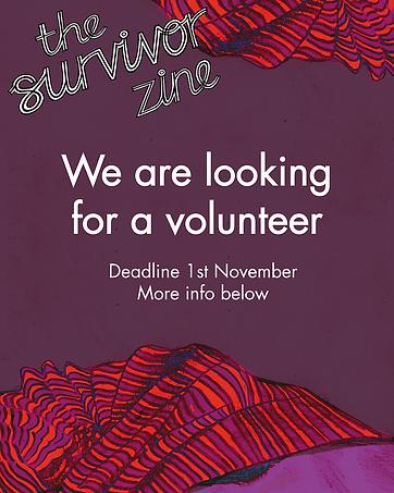 Volunteer position website.png