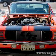 Lonestar Horsepower Z28 4.jpg