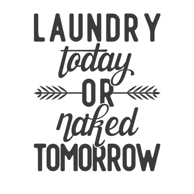 laundry today or naked tomorrow.png