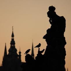 Prague No.3