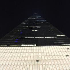 NYC Freedom