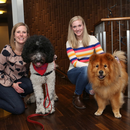 We the Dogs NYC: Launch Yappy Hour