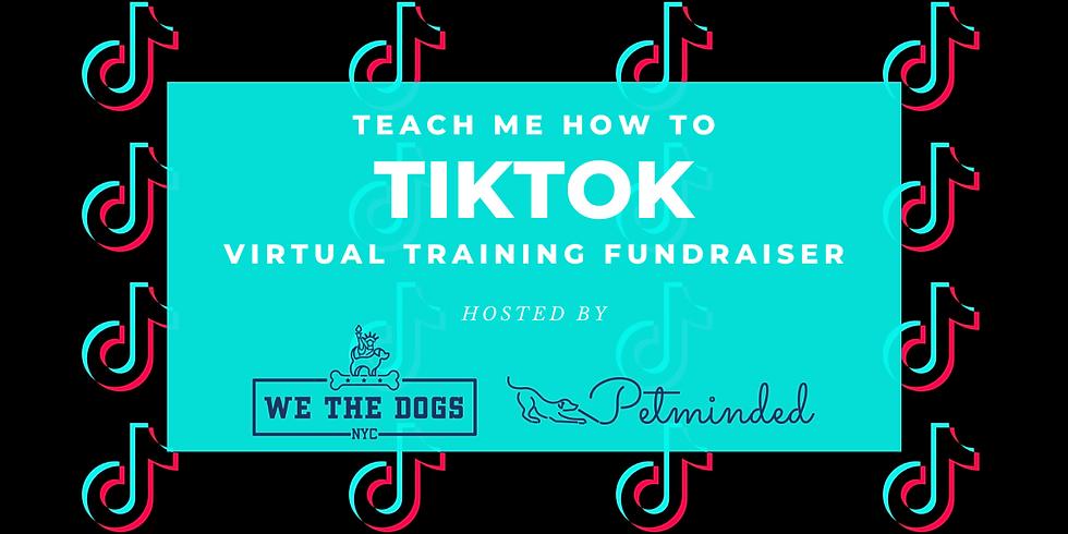 Teach Me How to TikTok!