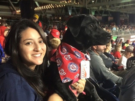 """7 Tips for a Home Run """"Pups in the Park"""" Experience"""
