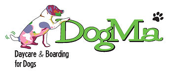 DogMa Daycare & Boarding for Dogs.jpg
