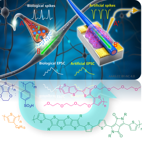 Our review on materials strategies for organic neuromorphics is online!!