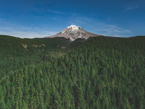 Image of a U.S. National Park, with a towering snowy mountain above a forest of green trees