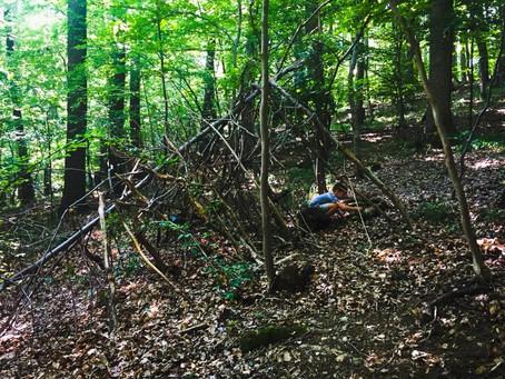 Gerade an den heißen Sommertagen ist es im Wald angenehm kühl. Da fühlt man sich im selbstgebauten U