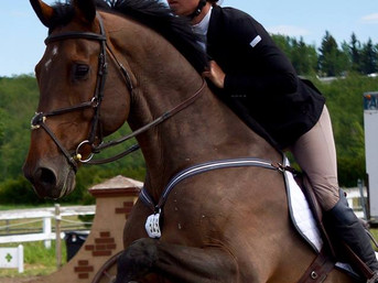 Katherine and Lucas - Eperon Equestrian
