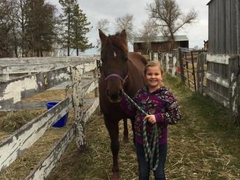 Eperon Pony - Eperon Equestrian