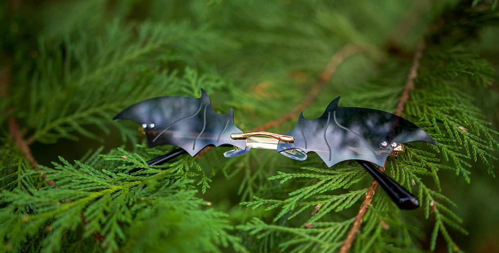 Bat Outta Hell