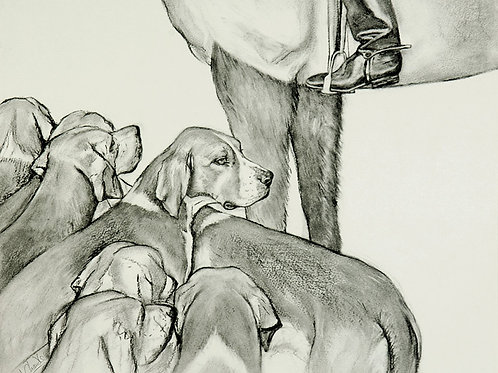 Hounds - Greetings Card