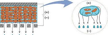 Principle 3.jpg
