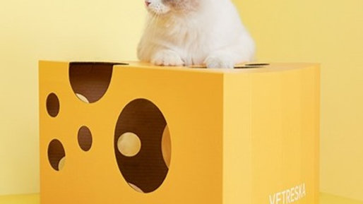 Vetreska Cheese Cat Scratches