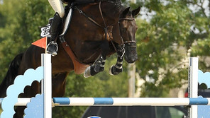 Save the Date for The St. Louis National Charity Horse Show 2021