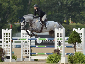 Bellis Show Jumping Welcomes Rebecca Lannoye to the Team