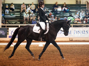 IEA Holds Inaugural Dressage National Finals in Texas