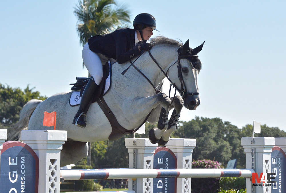 VDL Bravo S and Hunter Holloway/Marketing4Equestrians