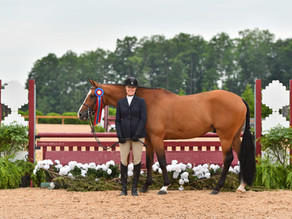 Diane Carney Leads Team Telluride to Wins at Great Lakes Equestrian Festival