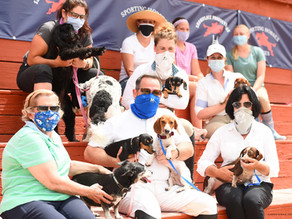 The Perfecta Farm Show Returns to Benefit Dachshund Rescue