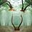 Thumbnail: Liminal Place x Natura Maga - Roe Deer Skull/Cap with Antlers