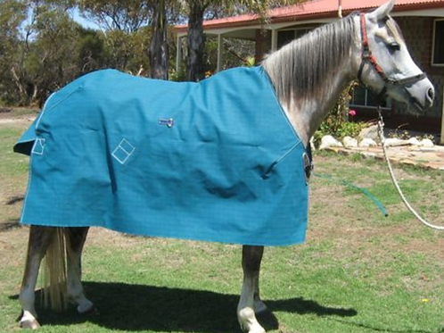 Regentex Regular Rug