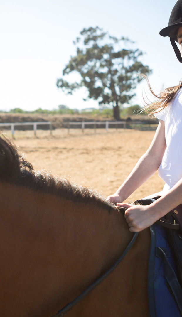 Pony Club and Riding Lessons