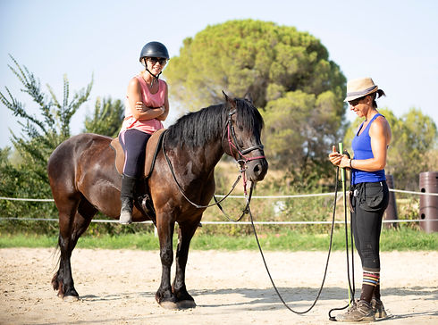 Natural Horsemanship Clubs and Events for Equestrians