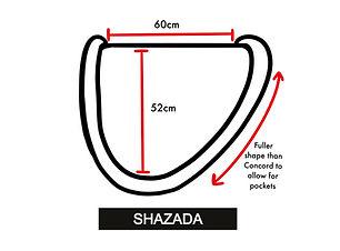 SHazhada_edited.jpg
