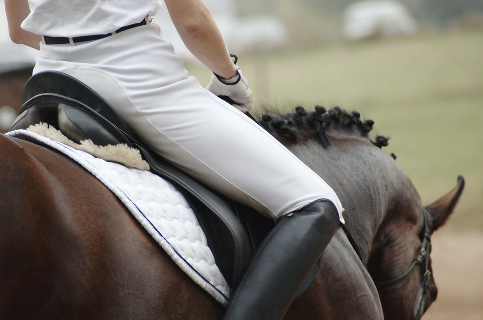 Equestrian Dressage Rider at a ManeHub Event