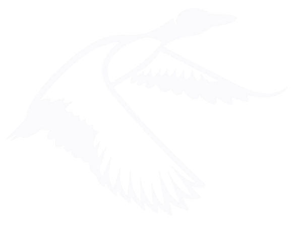 BlackDuck_WHT_PNG.png