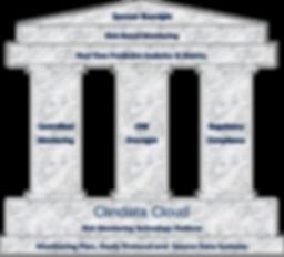 FDA Risk Based Monitoring Framework