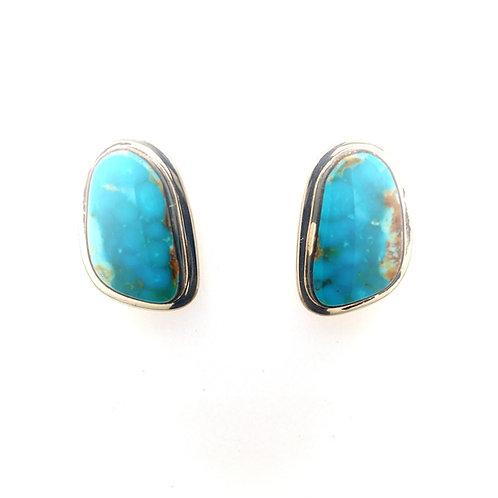 Silver and Turquoise Earrings