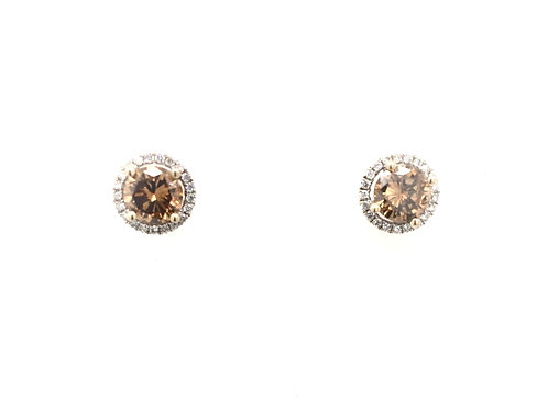 14kw Champagne Diamond Earrings