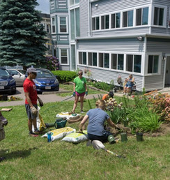 Wentworth volunteers at HERE House cleaning up the garden and planting new flowers
