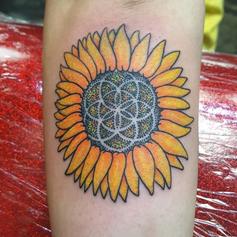 Sunflower - October 10, 2016